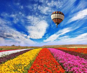 primavera-foto-gallery-04