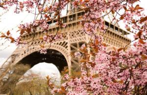 primavera-foto-gallery-11